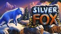 Игровые автоматы Красочный игровой автомат Silver Fox