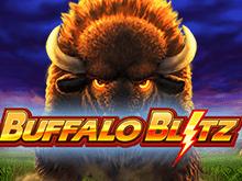 Игровые автоматы В Buffalo Blitz от Playtech играйте онлайн и выигрывайте